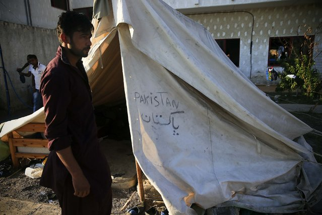 A migrant from Pakistan stands outside his tent in the garden of a deserted hotel on the Greek island of Kos, August 13, 2015. (Photo by Alkis Konstantinidis/Reuters)
