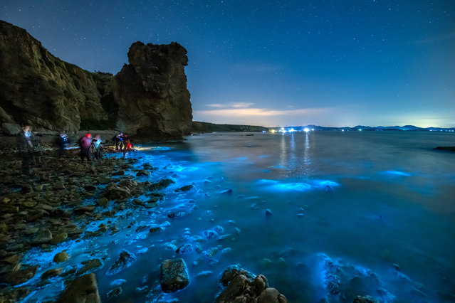 Visitors take photos of the fluorescent sea in the waters of Paishi Village, Dalian City, Liaoning Province, China, May 24, 2020, from the night of May 24 to the early morning of May 25, 2020. The fluorescent sea in dalian is caused by noctilucent algae in the sea water. (Photo by Costfoto/Barcroft Media via Getty Images)