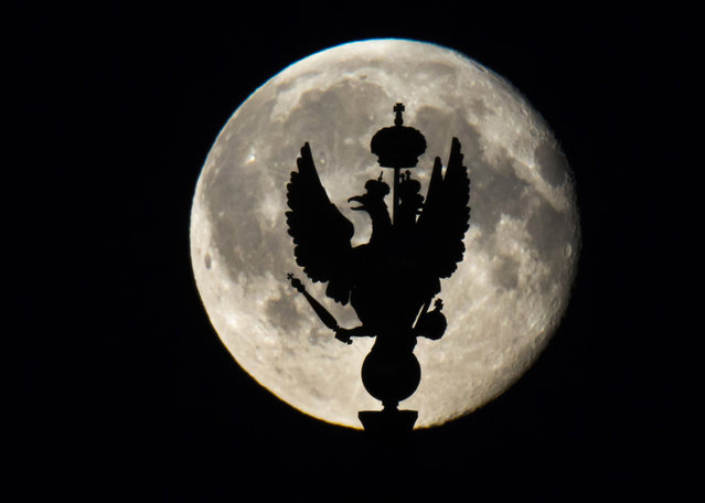 The gilded bronze sculpture of a two-headed eagle, Russia's state emblem, installed atop the Telegraph Tower of the State Hermitage Museum is silhouetted against the rising moon in St. Petersburg, Russia, late Saturday, August 1, 2015. (Photo by Dmitry Lovetsky/AP Photo)