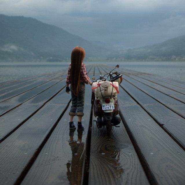 """""""After the rain"""". (Mikeyan Tamano)"""