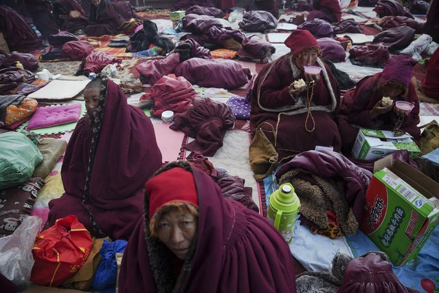 Tibetan Buddhist nuns protect themselves from sub zero temperatures with yak butter tea and warm clothes as they wait for morning chanting session to begin at Buddhist laymen lodge during the Utmost Bliss Dharma Assembly, the last of the four Dharma assemblies at Larung Wuming Buddhist Institute in remote Sertar county, Garze Tibetan Autonomous Prefecture, Sichuan province, China November 1, 2015. (Photo by Damir Sagolj/Reuters)