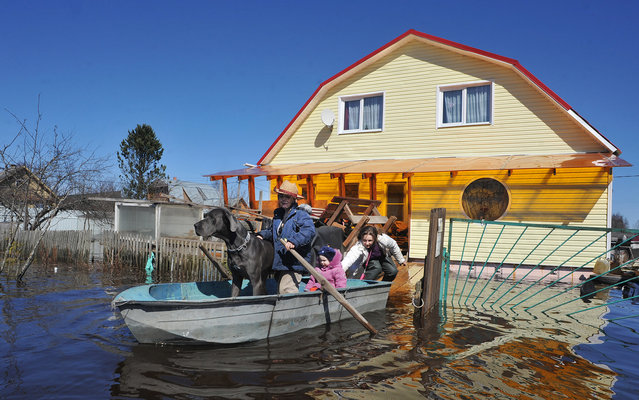 People prepare to paddle on a boat in the flooded village of Tosno during a spring flood  in the northwestern Russian Leningrad region, on April 22, 2013. (Photo by Olga Maltseva/AFP Photo)