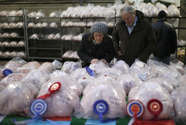 People examine a table of prize birds before the Turkey and dressed poultry auction at Chelford Market, northern England December 22, 2014. (Photo by Phil Noble/Reuters)