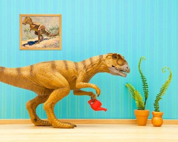 Wild Life By Jeff Friesen: Animals Meet Interiors