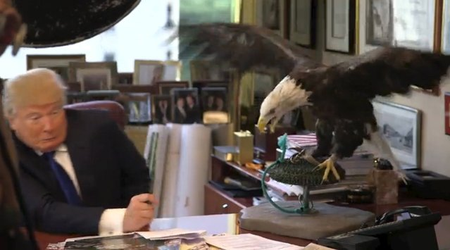 U.S. Republican presidential candidate Donald Trump poses with a bald eagle during a TIME Magazine photoshoot, as seen in this handout image taken from video provided by TIME Magazine December 10, 2015. (Photo by Reuters/TIME Magazine)