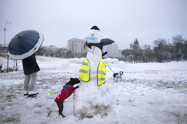 People walk their dogs next to a snowman decorated with a face mask in a snow-covered park, in Jerusalem, Thursday, February 18, 2021. (Photo by Oded Balilty/AP Photo)