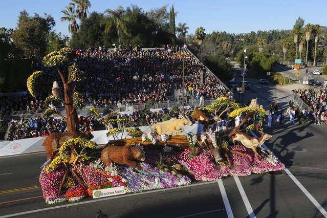 The Western Asset Management Company float moves through the 127th Rose Parade in Pasadena, California January 1, 2016. (Photo by David McNew/Reuters)