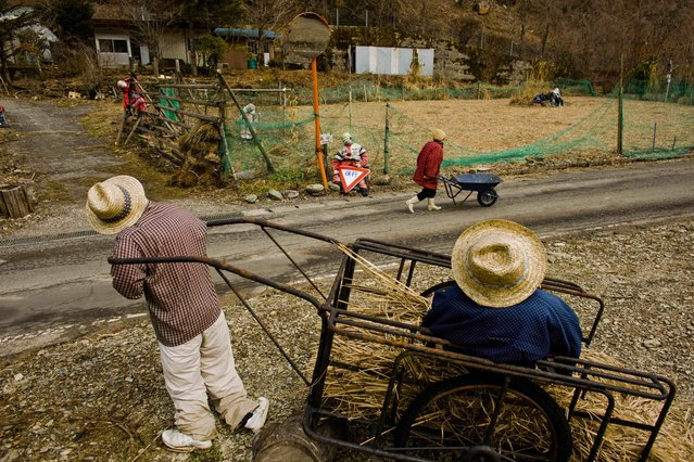 A woman pushes a wheelbarrow past scarecrows in the mountain village of Nagoro on Shikoku Island in southern Japan February 24, 2015. (Photo by Thomas Peter/Reuters)