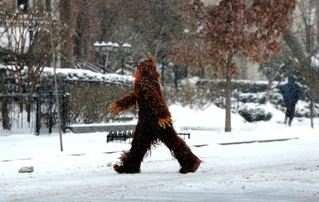 A man dressed in a gorilla costume crosses a snowy street March 3, 2014 in Washington, DC. (Photo by Win McNamee/AFP Photo)