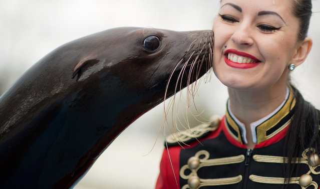 "Seal ""Steffi"" kisses circus assistant Victoria during a photo call at the Circus Charles Knie in Hanover, central Germany, on March 24, 2014. The circus with 110 animals and 100 employees gives guest performances in Hanover until April 6, 2014. (Photo by Julian Stratenschulte/AFP Photo/DPA)"