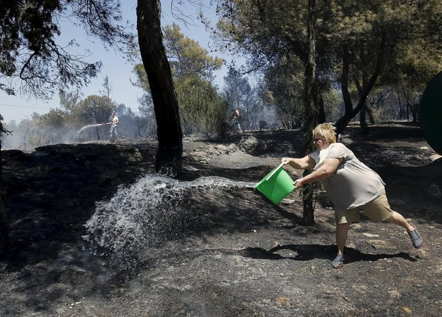 Local residents throw water to extinguish a forest fire in an Athens neighborhood July 17, 2015. (Photo by Yannis Behrakis/Reuters)