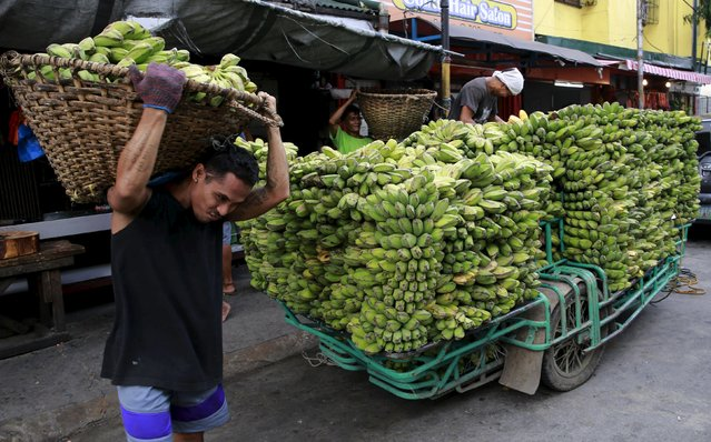 A worker carries a basket full of bananas unloaded from a motorcycle cab, which will be delivered to a nearby wet market, in Manila July 21, 2015. (Photo by Romeo Ranoco/Reuters)
