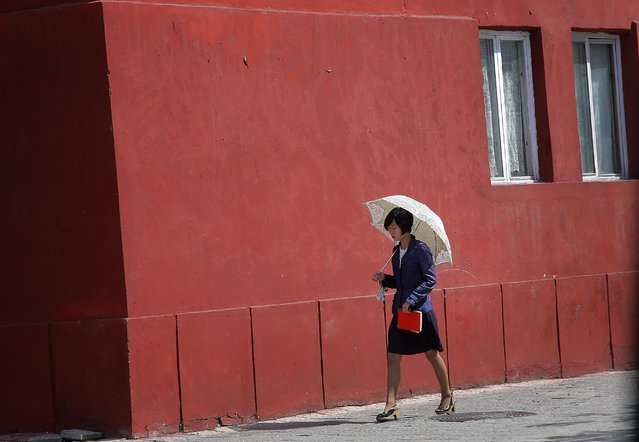 A woman walks down a street under the shade of an umbrella, Saturday, May 9, 2015 in Pyongyang, North Korea. Umbrellas have become a popular accessory for well-heeled women in Pyongyang especially during the spring and summer. (Photo by Wong Maye-E/AP Photo)