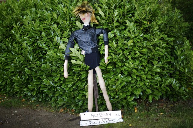 A scarecrow of singer Tina Turner leans against a bush during the Scarecrow Festival in Heather, Britain July 29, 2015. (Photo by Darren Staples/Reuters)