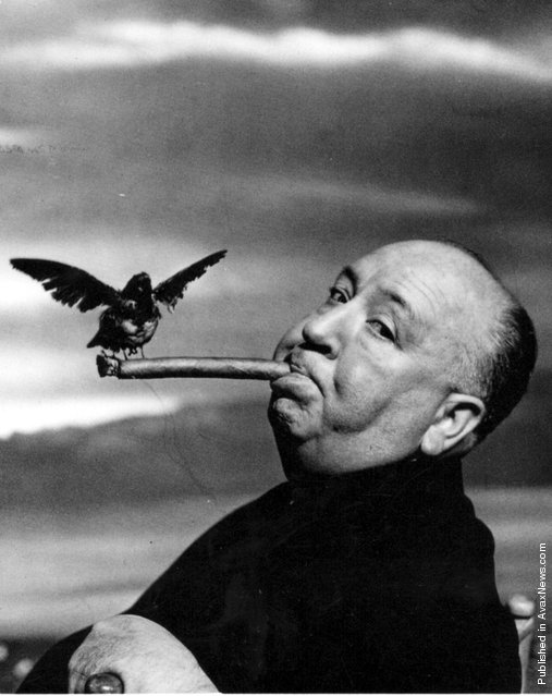 Alfred Hitchcock, 1962. Photo by Philippe Halsman