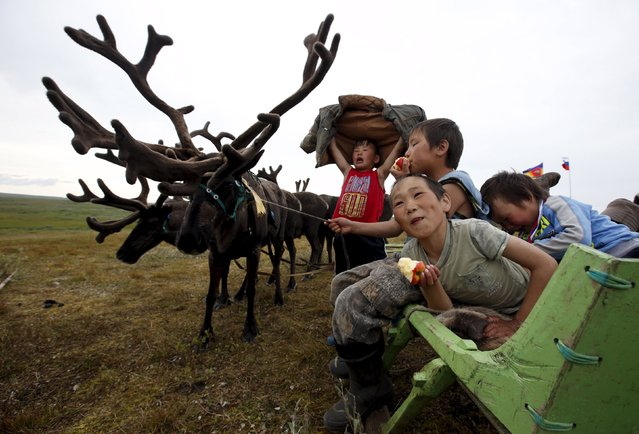 Children of local herders gather at a reindeer camping ground, some 200 km (124 miles) northeast of Naryan-Mar, the administrative centre of Nenets Autonomous Area, far northern Russia, August 2, 2015. (Photo by Sergei Karpukhin/Reuters)