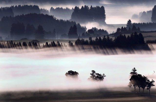 A morning fog glows above the Alpine foothills near Bernbeuren, Germany, June 26, 2014. (Photo by Karl-Josef Hildenbrand/EPA)