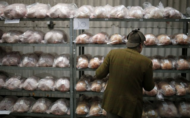 A man looks at shelves full of turkeys ahead of th  Turkey and dressed poultry auction at Chelford Market, northern England December 22, 2014. (Photo by Phil Noble/Reuters)