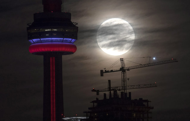 The supermoon sets behind the CN tower in Toronto on Monday, November 14, 2016. The brightest moon in almost 69 years lights up the sky this week in a treat for star watchers around the globe. The phenomenon is known as the supermoon. (Photo by Frank Gunn/The Canadian Press via AP Photo)