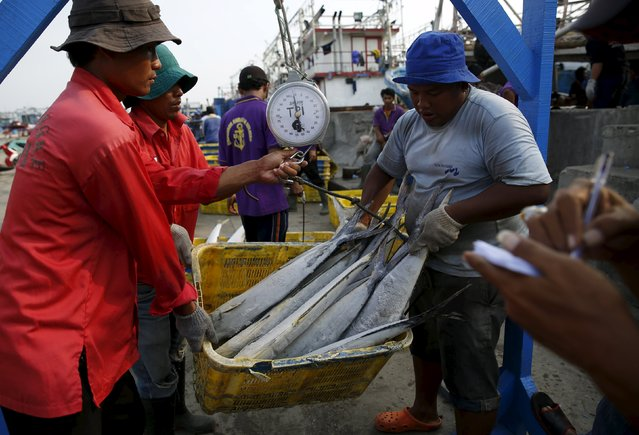 Workers weight frozen tuna before selling at Muara Angke fish auction in Jakarta, January 4, 2016. (Photo by Reuters/Beawiharta)