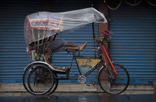 A rickshaw puller waits for customers during heavy rainfall in Kathmandu, Nepal, 28 May 2021. As Government stricken nationwide lockdown from 28 May 2021 to control coronavirus disease (COVID-19) infection and deaths, low-income families are struggling to cater for their daily lives. (Photo by Narendra Shrestha/EPA/EFE)