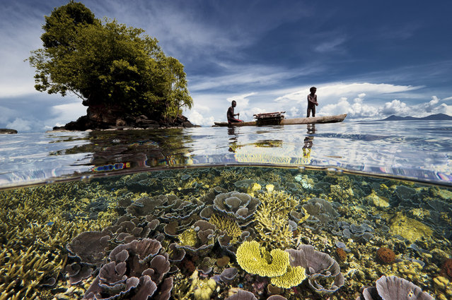 "From the ""Paradise Revisited"" story in the November 2013 issue of National Geographic magazine, this image is a beautiful vision of father and son fishermen as they move through the multicolored coral gardens of Kembe Bay, Papua New Guinea, in a traditional outrigger canoe. (Photo by David Doubilet/National Geographic Creative)"