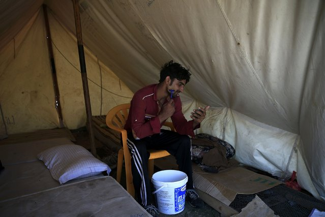 A migrant shaves inside his tent set-up in the garden of a deserted hotel on the Greek island of Kos, August 13, 2015. (Photo by Alkis Konstantinidis/Reuters)