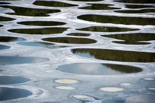 Kliluk, the Spotted Lake, Canada