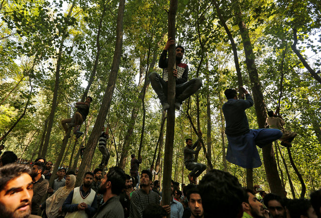 People climb trees to watch the body of Dawood Illahi Khan, a suspected militant, who according to local media was killed in an encounter with the Indian security forces, being taken away for burial in Hawoorah village in south Kashmir's Kulgam district, September 11, 2017. (Photo by Danish Ismail/Reuters)