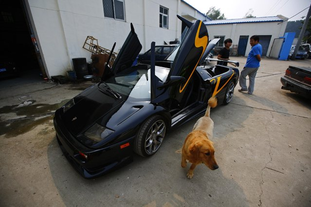 A dog walks past a handmade replica of Lamborghini Diablo outside a garage rented by Wang Yu and Li Lintao on the outskirts of Beijing, August 21, 2014. (Photo by Petar Kujundzic/Reuters)