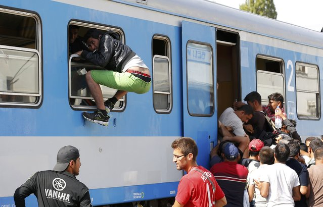 A migrant tries to get on a train through a window at the station in Beli Manastir, Croatia September 18, 2015. (Photo by Laszlo Balogh/Reuters)