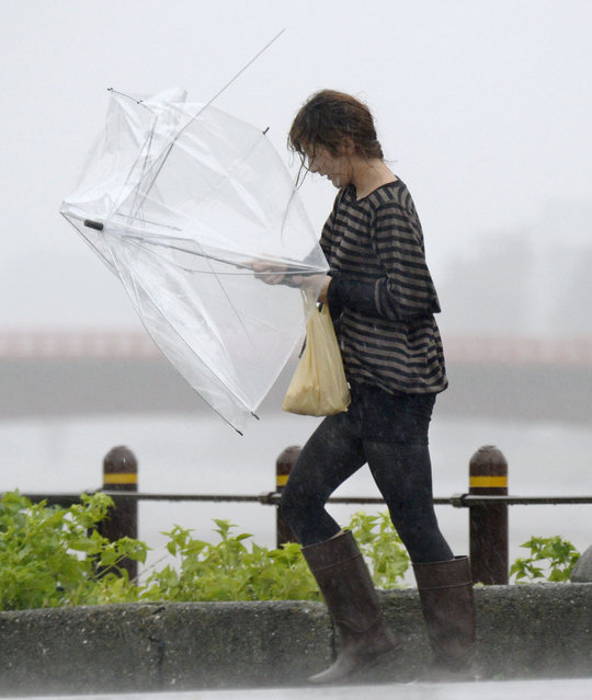A woman drenched with heavy rain caused by Typhoon Vongfong walks with a broken umbrella in Kochi in the southwestern Japanese island of Shikoku Monday, Oct. 13, 2014. The typhoon was downgraded to a tropical storm as it hit the Japanese island of Kyushu after battering the southern island of Okinawa. (Photo by Ren Onuma/AP Photo/Kyodo News)