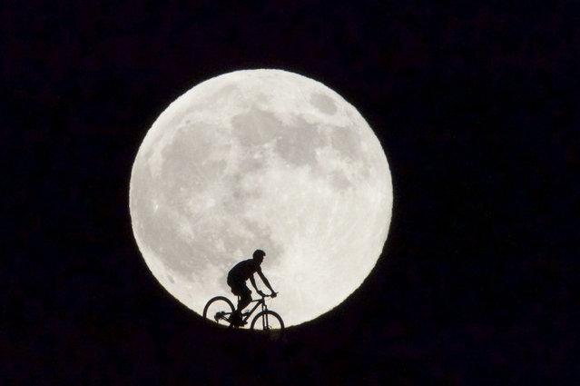 A cyclist is seen passing before the supermoon in Fuerteventura, Canary Islands, Spain, 29 August 2015. The supermoon marks the point at which the Moon and the Earth are the closest to each other during the whole year. (Photo by Carlos De Saa/EPA)
