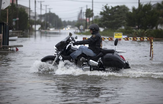 A motorcyclist navigates through flood waters in Garden City Beach, South Carolina, October 2, 2015. Category 4 Hurricane Joaquin is now moving northward and has started bringing swells to parts of the southeastern coast of the United States, the National Hurricane Center said on Friday. (Photo by Randall Hill/Reuters)