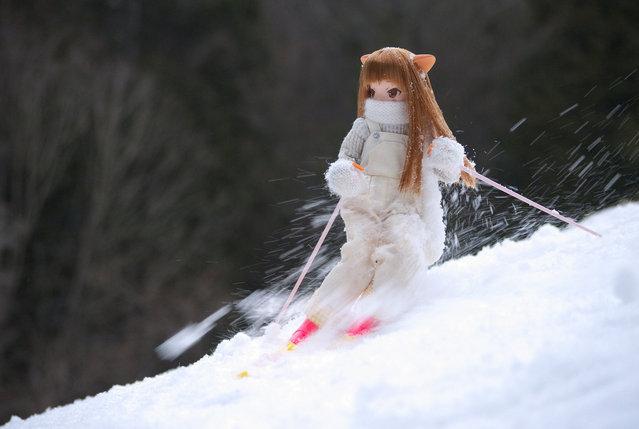 """Nekosan Skiing"". (Mikeyan Tamano)"