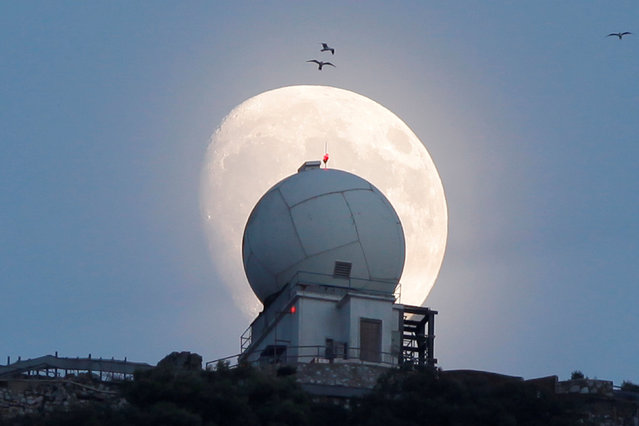 The crescent moon rises, three days before of the supermooon, over a building on the top of the Rock in the British overseas territory of Gibraltar, historically claimed by Spain, November 11, 2016. (Photo by Jon Nazca/Reuters)