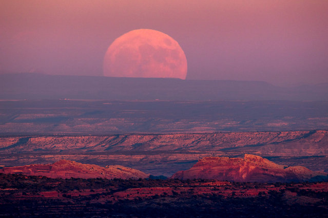 """A nearly full moon rises above the Valley of the Gods near Mexican Hat, Utah, USA, 13 November 2016. November will see the largest full moon since 1948, also known as the """"supermoon"""", when the moon reaches its closest point to Earth and becomes full at 8:52 AM EST, 13:52 UTC on 14 November. The next time the moon will be this close will be on 25 November 2034. (Photo by Jim Lo Scalzo/EPA)"""