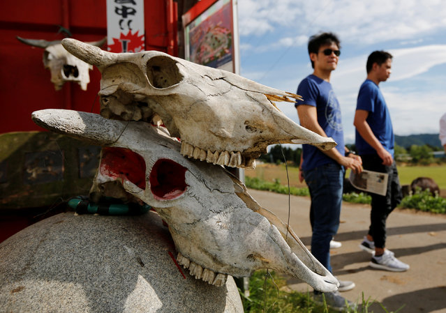 Tourists from Philippines walk past irradiated cattle skulls at the Farm of Hope, near Tokyo Electric Power Co's (TEPCO) tsunami-crippled Fukushima Daiichi nuclear power plant, in Namie town, Fukushima prefecture, Japan May 17, 2018. (Photo by Toru Hanai/Reuters)