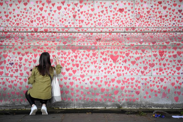 A woman writes a message on a heart painted on the National Covid Memorial Wall, at the embankment on the south side of the River Thames in London on May 28, 2021, in memory of those who lost their lives to Covid-19. Organised by the group Covid-19 Bereaved Families For Justice UK, which has called for a public inquiry into the government's handling of the pandemic, volunteers created a mural made up of roughly 150,000 hand-drawn red and pink hearts to remember the victims of the coronavirus crisis. (Photo by Daniel Leal-Olivas/AFP Photo)