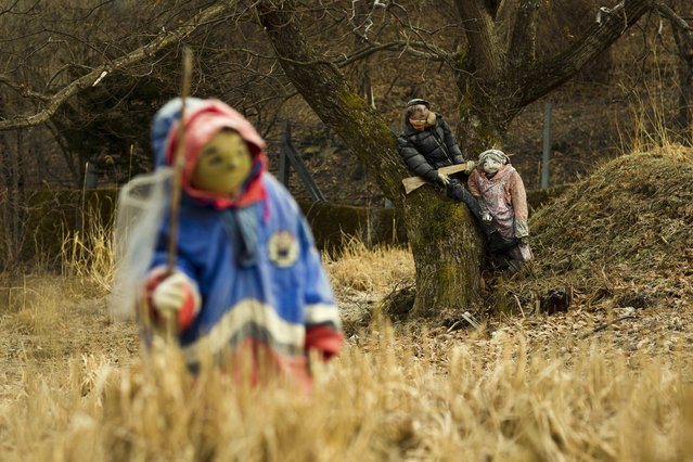 Scarecrows stand in a field in the mountain village of Nagoro on Shikoku Island in southern Japan February 24, 2015. (Photo by Thomas Peter/Reuters)