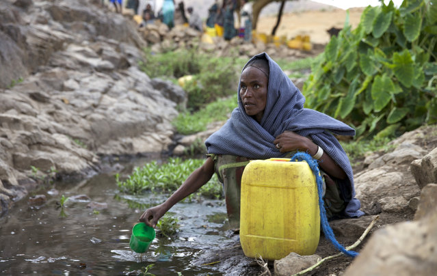 A woman collects water from a stream outside the village of Tsemera in Ethiopia's northern Amhara region, February 13, 2016. (Photo by Katy Migiro/Reuters)
