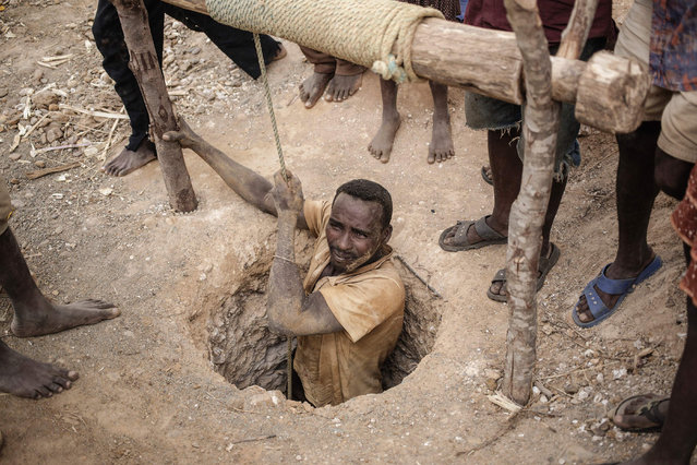 A malagasy Sapphire miner resurfaces from a hole in the ground during mining at an informal Sapphire mine on December 2, 2016 on the outskirts of Sakaraha, Madagascar. (Photo by Gianluigi Guercia/AFP Photo)