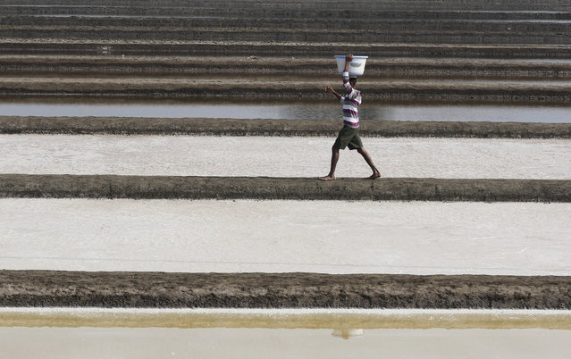 A labourer carries salt in a salt pan in Mumbai, India February 9, 2017. (Photo by Shailesh Andrade/Reuters)