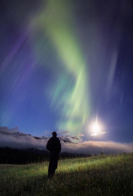 "Paul Zizka in ""Awaiting Abduction"", Cascade Meadows, Banff National Park, June 1, 2013. (Photo by Paul Zizka/Caters News)"