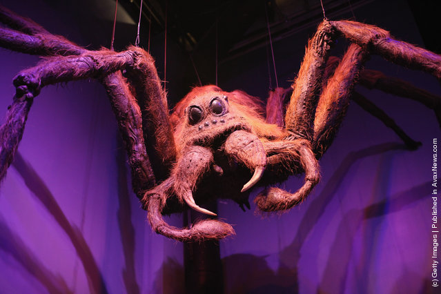 A model of Aragog used in 'Harry Potter and the Chamber of Secrets' (the second film in the series) is displayed at the new Harry Potter Studio Tour at Warner Brothers Leavesden Studios