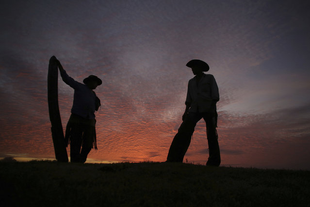 """In this May 18, 2017 photo, Joao Aquino Pereira, right, talks with fellow cowboy Rene Almeida at dawn in Corumba, Pantanal wetlands, Mato Grosso do Sul state, Brazil. On his feet hours before sunrise, 66-year-old Pereira readies the horses and wakes up the herd of oxen for a new day in the three-week pilgrimage in search of grass. """"Today's going to be one of those days"""", says the old cowboy, forecasting the weather by looking up at the red skies. """"It seems like it'll be a hot one and we still need to prepare the cattle to go across the river"""". (Photo by Eraldo Peres/AP Photo)"""