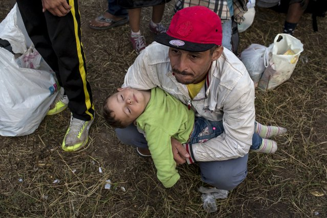 A migrant from Syria holds a child as they wait for a bus after crossing into Hungary from the border with Serbia on a field near the village of Roszke, September 5, 2015. (Photo by Marko Djurica/Reuters)