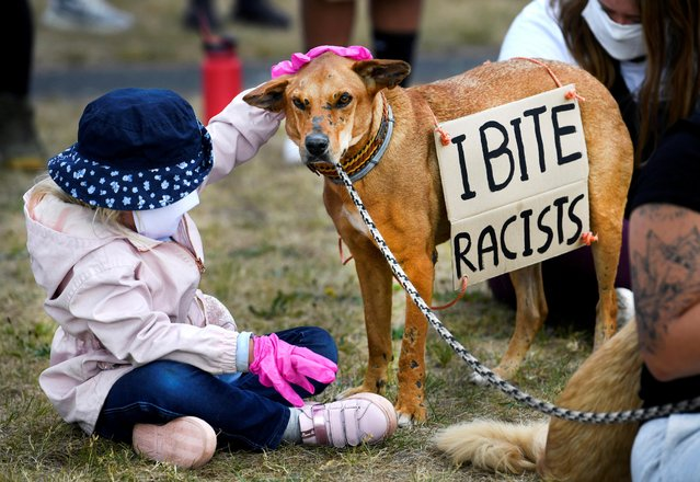 A child pets a dog with a placard attached to it during a protest against the death in Minneapolis police custody of George Floyd, in Maastricht, Netherlands on June 7, 2020. (Photo by Piroschka van de Wouw/Reuters)