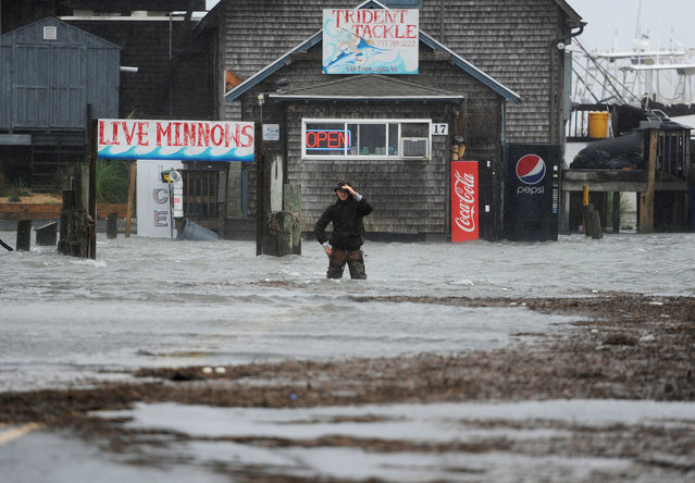 Quinn Hurt looks across Atlantic Avenue as he attempts to cross the flooded street in Wachapreague, Va., Friday, October 2, 2015. A storm system brought heavy rain and wind into the region as well as major coastal flooding. (Photo by Jay Diem/The Daily Times via AP Photo)
