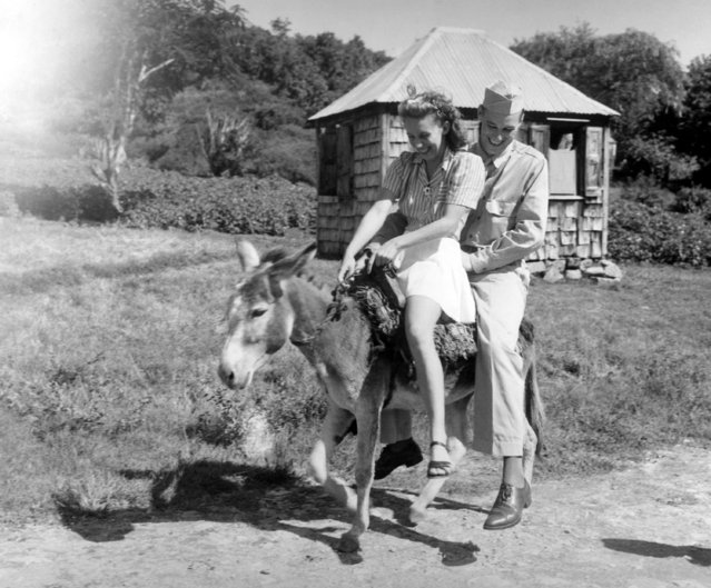 Sergeant Thomas R. McDonald of New York City and his British West Indies girl friend, Miss Peggy McKinstry, are seeing the tiny, historic Antigua island in a gasless way aboard one of the native donkeys  January 18, 1943. (Photo by AP Photo/U.S. Army Photo)